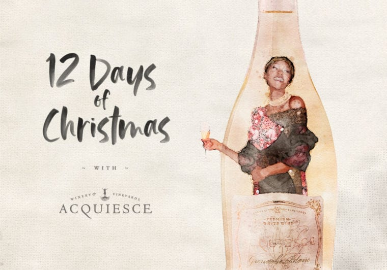 The 12 Days of Christmas!